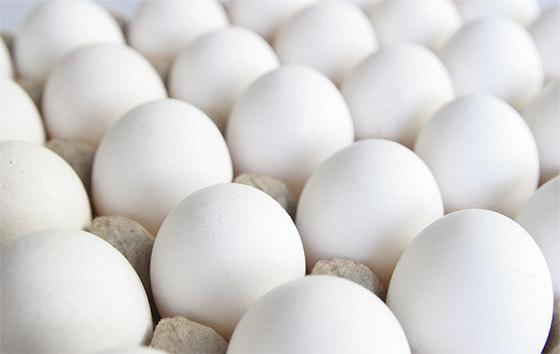 proteine-blanc-oeuf