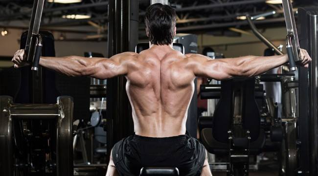 programme de musculation épaule